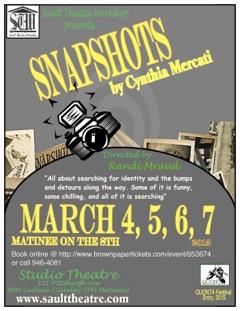 Snapshot interim poster